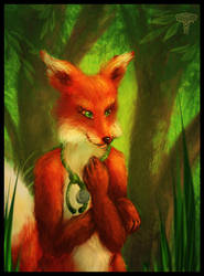 Commission: Fox Doctor by Fyrrea