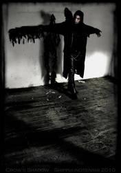 Crow's Shadow by Shippuunotenshi