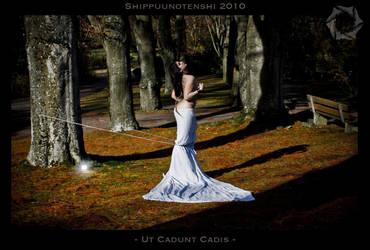 Ut Cadunt Cadis by Shippuunotenshi