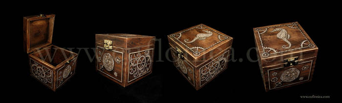 Steampunk Box I by Euflonica