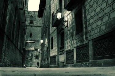 Barcelona - Barri Gotic by kaneda99