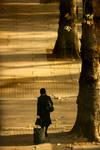 On the Seasonal Leave by CenkDuzyol