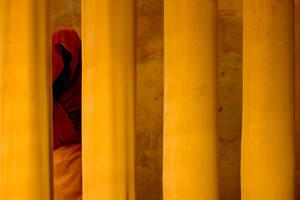 Monk vol.2 by CenkDuzyol