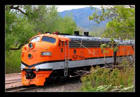 Royal Gorge Rail by NitzkaPhotography