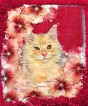 Little Kitty by allison731