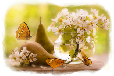 Pears and Butterflies by allison731