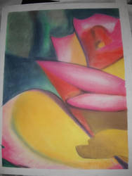 Drawing 1: Flower close-up by BFan1138