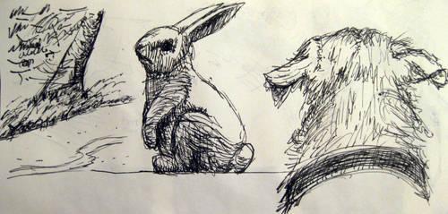 Backyard Doodles by BFan1138