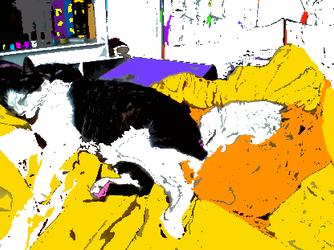The Cats In The Room of Disorganized Color by sm364217