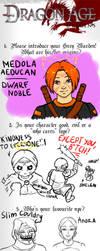 Dragon Age Origins Meme by hweel