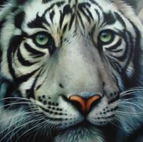 white tiger 2 by Raipun