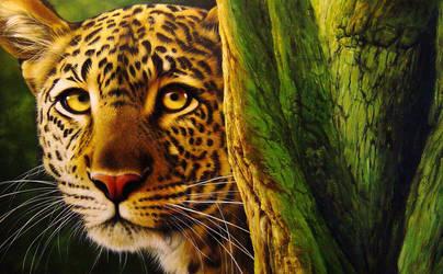 Leopard by Raipun