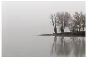 Fog is falling... by ndefo