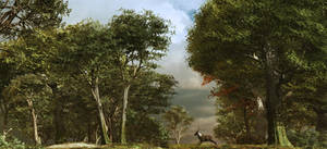 Woodland Clearing by DIGITAL-DOM