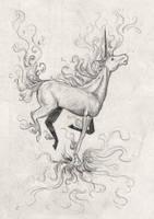 Rapidash Sketch by WhisperCatt