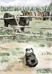 Herd Watching ACEO by art-paperfox