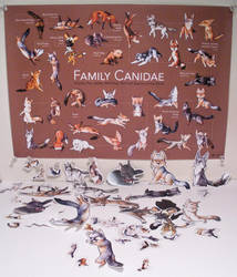 Family Canidae Poster + Goods by art-paperfox