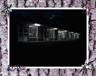 CNM 09 by Kislaw