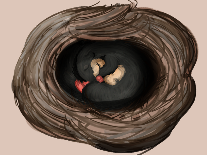 Dormouse by RocaTeithmore