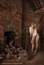 Cinderella by Alt-Images