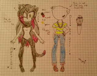 Sonic Adoptable Cat 02# (only the oc is Free) by UnyloveLynx