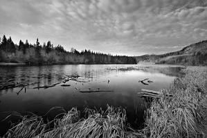 Alaska shot in black and white by Brettc