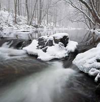 Winter Flow by Brettc