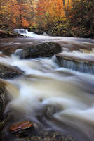 Fall Flow by Brettc