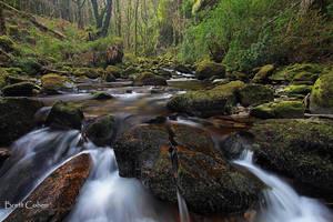 Killarney National Park, by Brettc