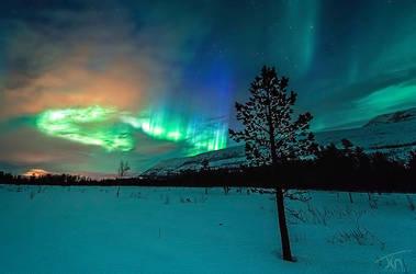 Cosmic Palette by torivarn