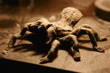 Fuzzy Friend Tarantula by theorifice
