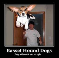Basset Hound Dogs by dirtbiker715