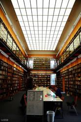 Frankurt Uni Library by canbayram