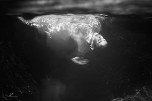Lost in the Tyrrhenian Sea by LisaDenise