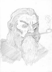 Gandalf the Grey by Victor Osejo by TimewiseStudios