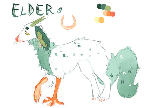 Elder REF by ItsAboutThyme