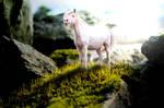 pink. by ooralea