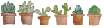 F2U   Cactus Plant Divider by UmieArt