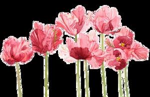 F2U | Flower Divider 4 by UmieArt
