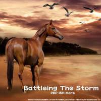Battleing The Storm by WildDogArt