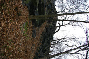 Garden 3 by skipsstock