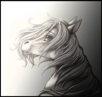 .:Letalla Request:. by aluckymuse