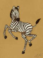 A Dancing Zebra by aluckymuse