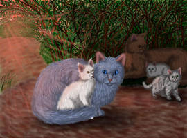 Bluestar's Prophecy. Bluefur and Whitekit. by Alisa222