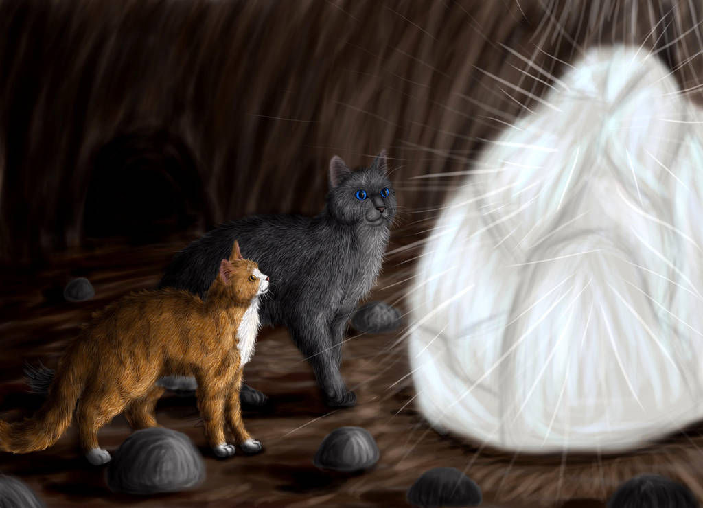 Cinderpelt and Leafpaw by Alisa222