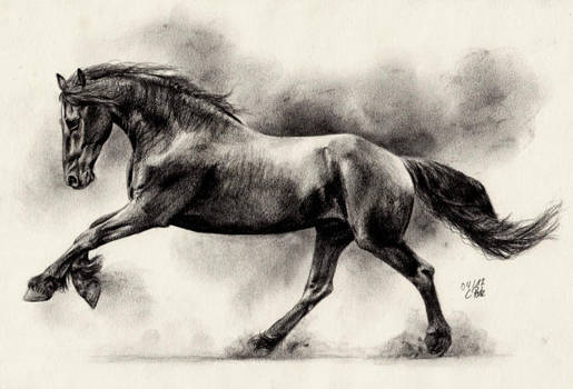 Friesian Horse II by ManiaAdun