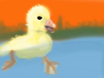 Duckling Takes A Swim by JoshCooperAnimation