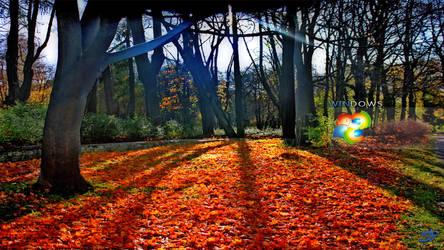 Windows 8 Autumn walk by spcine