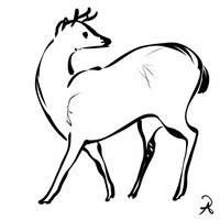 Inktober 2018 #7 - Bawean deer by callanerial
