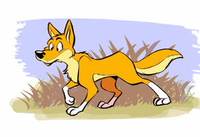 Real dingo by JuneDuck21